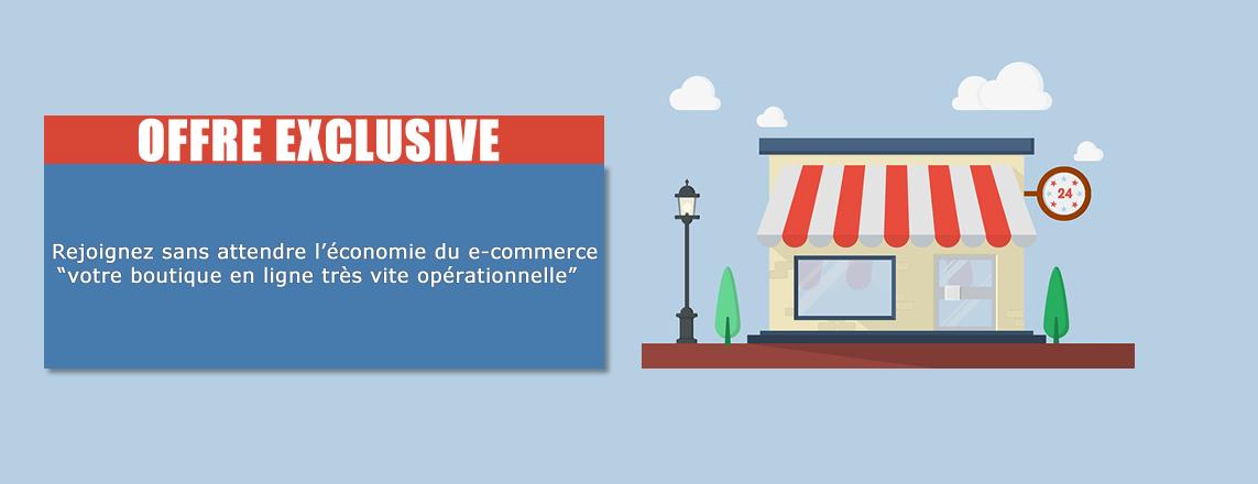 Demandez un devis pour la création ou refonte de votre site internet vitrine et e-commerce 2 en 1 !
